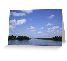 Everglades 27 Greeting Card