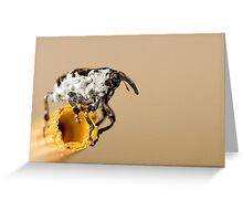 Weevil On a Strand of Hay Greeting Card
