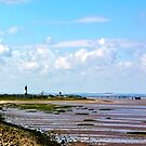 Humber Estuary by Trevor Kersley