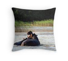Hippo-fight-omus Throw Pillow