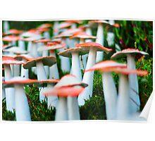 Mushroom attack Poster
