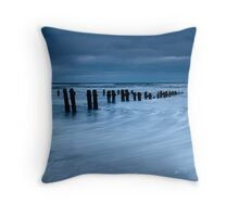 Coming in and going Out Throw Pillow