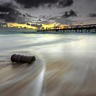 The Log & the Sweeping Wave - Gold Coast Qld Australia by Beth  Wode
