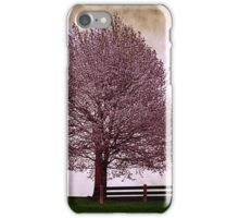 Afternoon in the Park iPhone Case/Skin