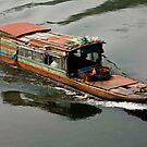 Li River Taxi by phil decocco