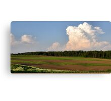 Ribbon Field Canvas Print