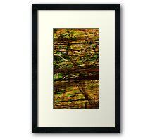 Emerald Wood Framed Print