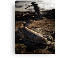 Run for your life! Canvas Print
