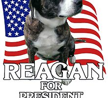 Reagan For Prez. by lettersBheather