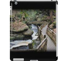 Gorge Walk iPad Case/Skin