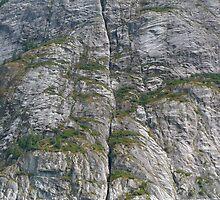 Split Rock by RolandArnold
