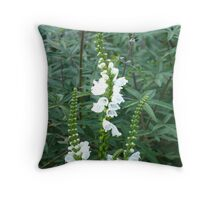 Chastity and Grace Throw Pillow