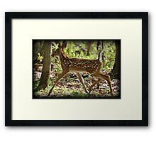 Prancing Youth Framed Print