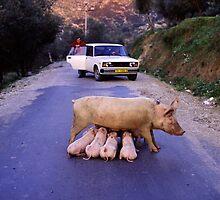 traffic stop by Michele Molinari
