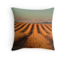 Raspberry Field in Winter Throw Pillow