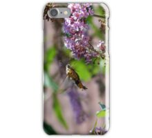 Bee Hawk Moth iPhone Case/Skin