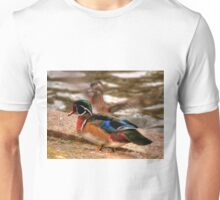 Male Wood Duck Unisex T-Shirt