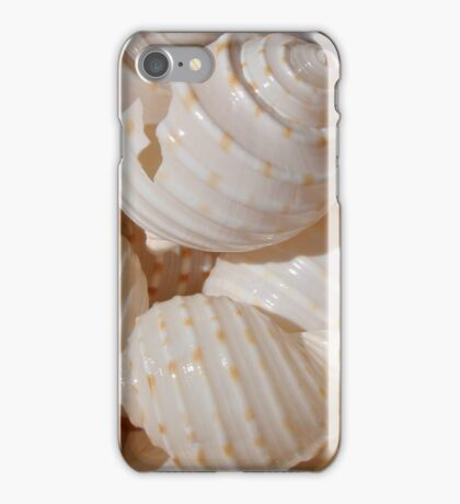 Cream Shells iPhone Case/Skin