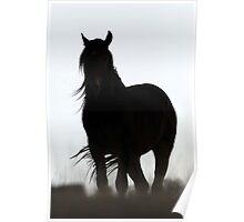 Mysterious Stallion Poster