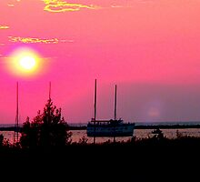 Dinner Cruise in Red/Orange - Muskegon, MI by Deb  Badt-Covell