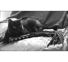 Bad Kitty Photographic Print