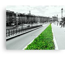 The green lung of the city Metal Print