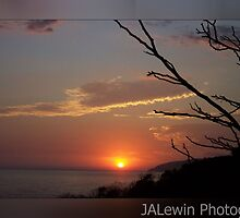 Twiggy sunset by jalewin