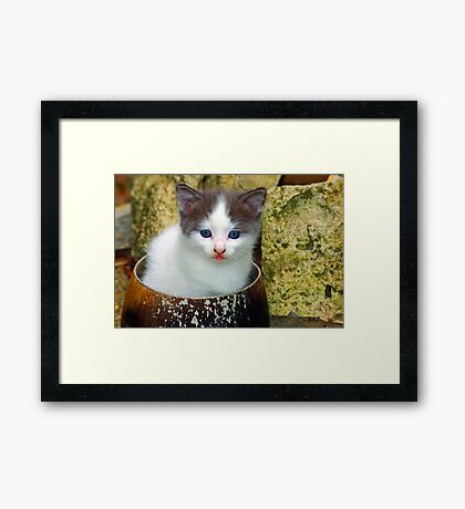 Does my bum look big in this Framed Print