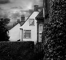 Holt Houses by Hannah Edwards