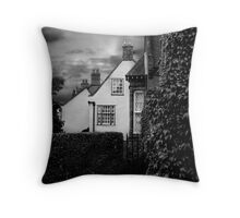 Holt Houses Throw Pillow