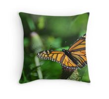 Monarch with wings open Throw Pillow