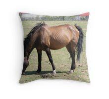 Dun Navajo Mustang Throw Pillow
