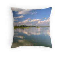 Yahara River Reflections Throw Pillow