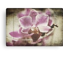 Shining Completely Canvas Print