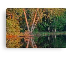 Rice River Reflections Canvas Print