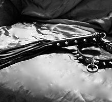 Leather Collar and Flogger by Waitingstar