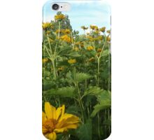 Colorful Garden, Santa Fe, New Mexico iPhone Case/Skin