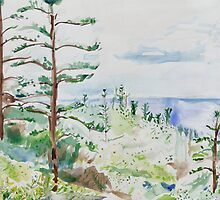 Norfolk Pines, Bucks Point by John Douglas