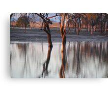 SILENTYLY INVISIBLE Canvas Print