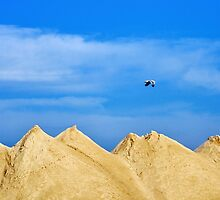 Sand Hills by Laurie Minor