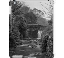 Old Mill in the Dene iPad Case/Skin