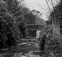 Old Mill in the Dene by Brian Avery
