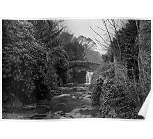 Old Mill in the Dene Poster