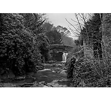 Old Mill in the Dene Photographic Print