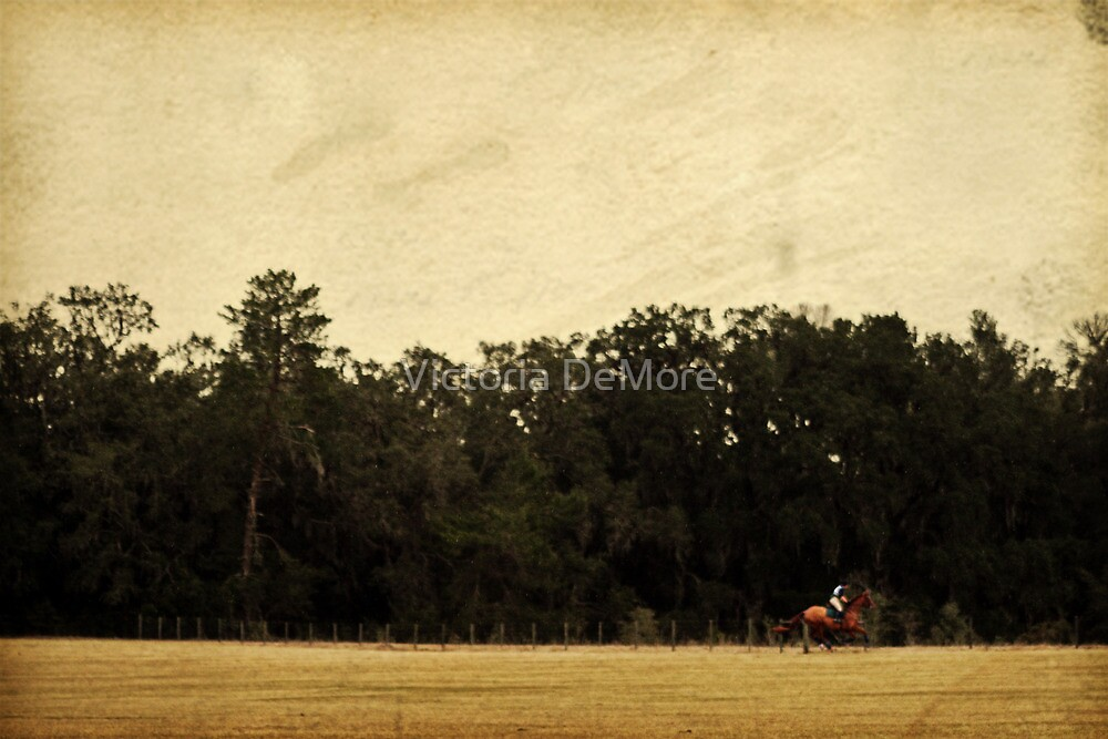 Cross-Country by Victoria DeMore