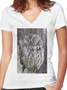 Sleepy Owl Women's Fitted V-Neck T-Shirt