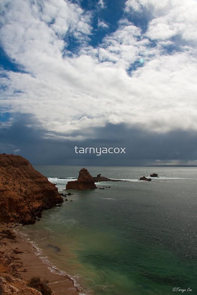 High Cliffs, South Australia by tarnyacox