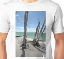 Stumps at Stump Pass Florida, USA Unisex T-Shirt