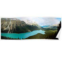 Peyto Lake , Canada Poster
