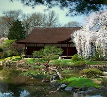Japanese House by busidophoto